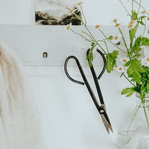 French Shears