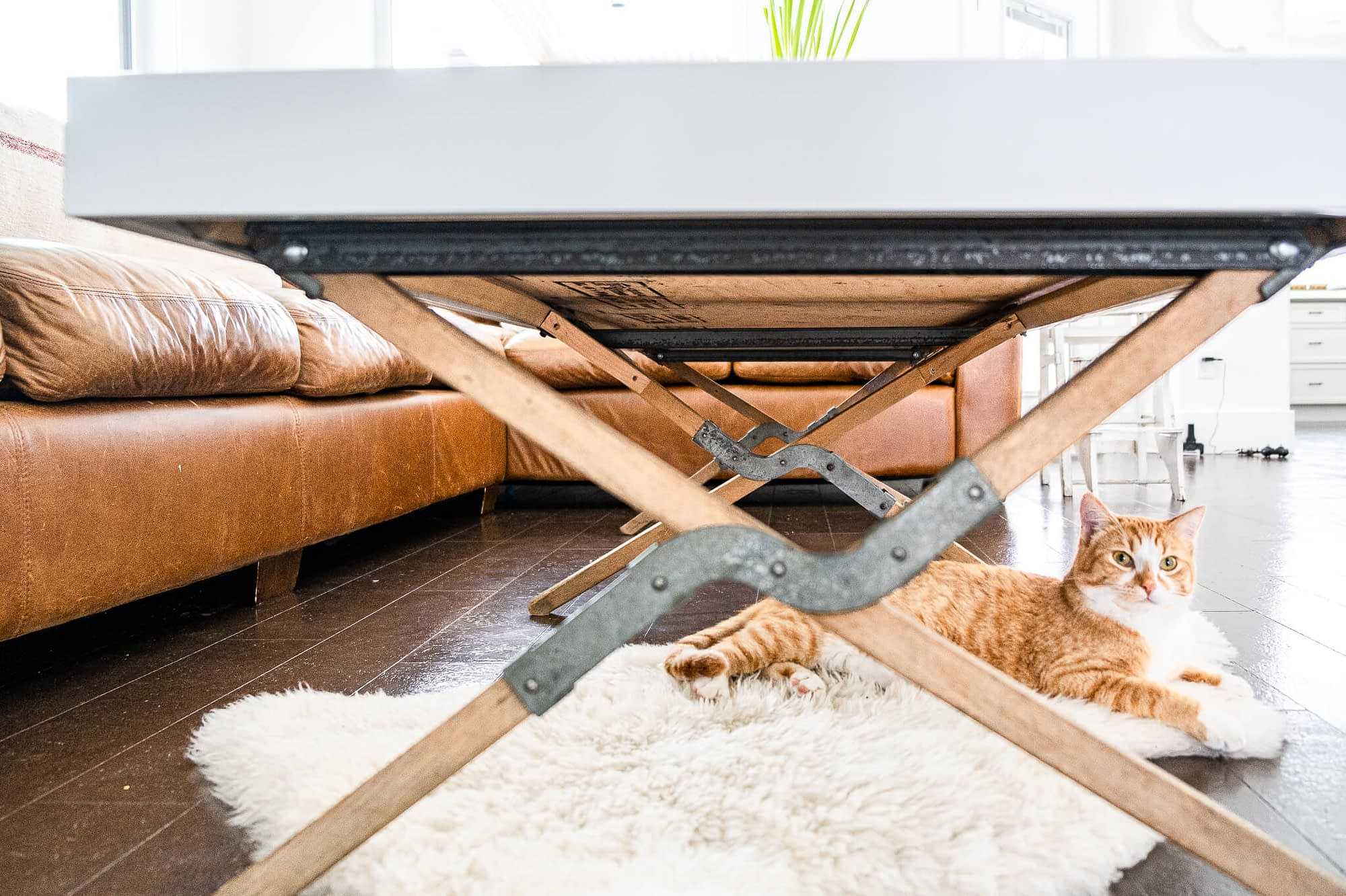 Legs of Coffee Table