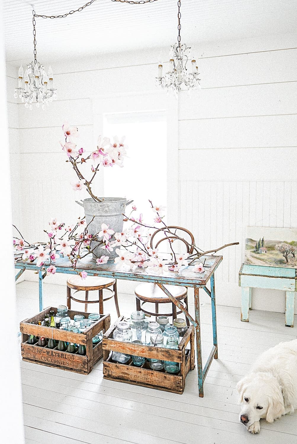 magnolia flowers in an office