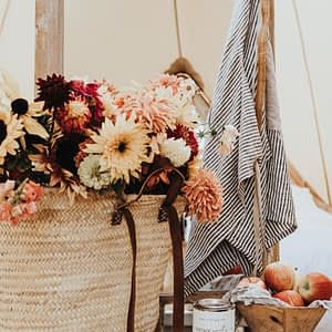 Fall Harvest Package