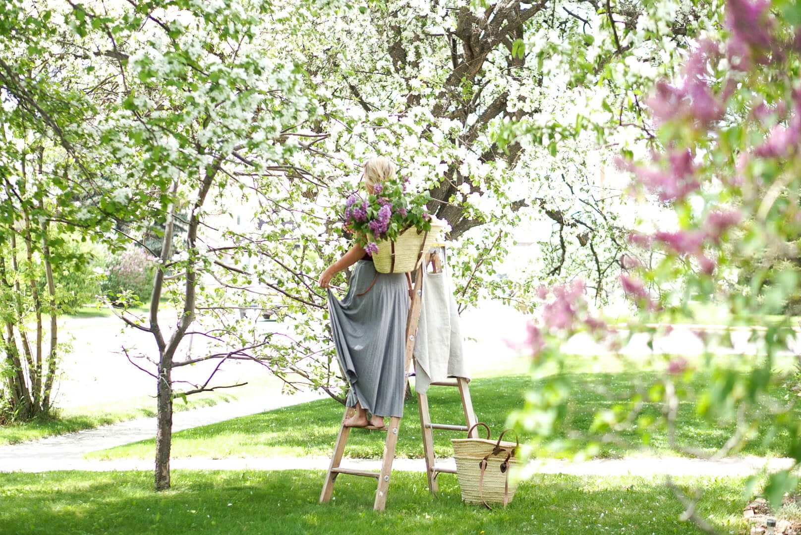 Girl on a ladder in blooming trees photo shoot