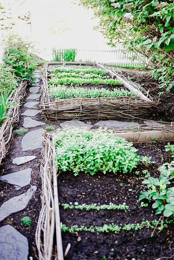 growing secret garden with woven willow raised planter boxes