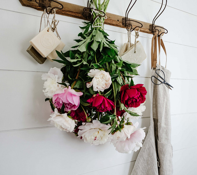 Hang Drying Peonies