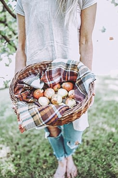 deb as an instagram influencer apple in Basket and Scarf