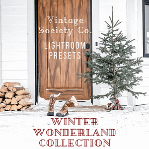 Winter Wonderland Presets