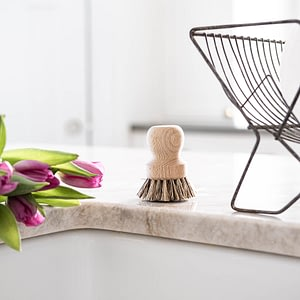 bristle, brush, wooden scrub brush, dish, vegetables