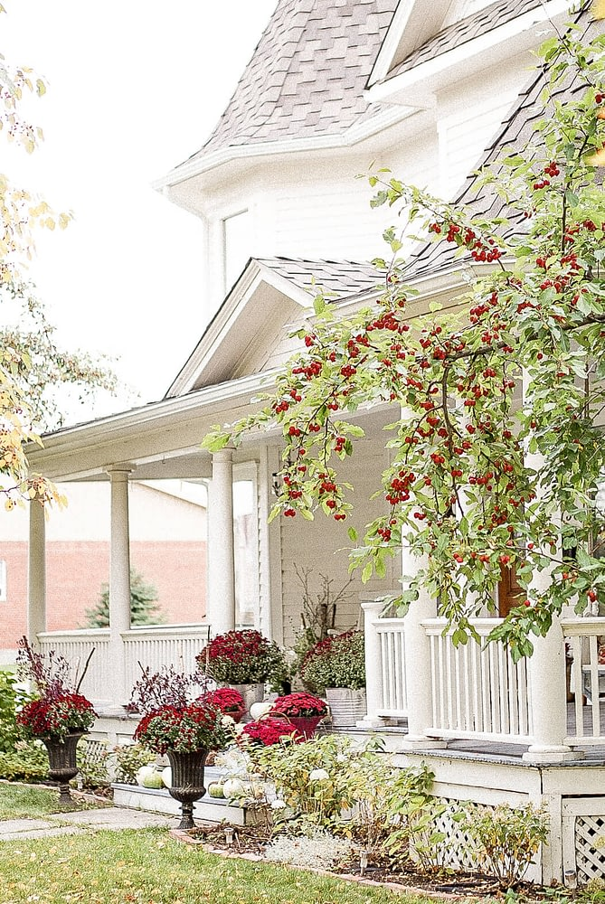 Fall Front Entrance white house Autumn Outdoor Home Tour fall farmouse decor birch wood mums and pumkins front deck pink mums