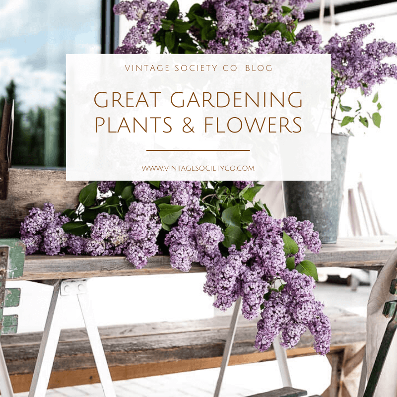 Great Gardening Graphic 1