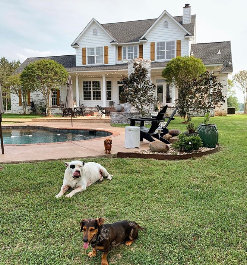 farmhouse exterior backyard pool dogs laying pool side